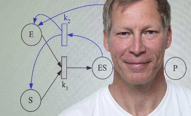 Olaf Wolkenhauer, Professor f�r Systembiologie