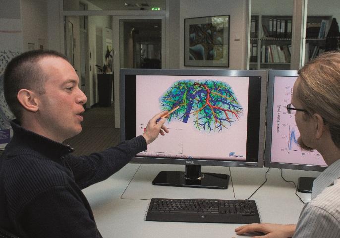 Ein Forscher zeigt ein Bild einer Lebersimulation auf dem Computerbildschirm.
