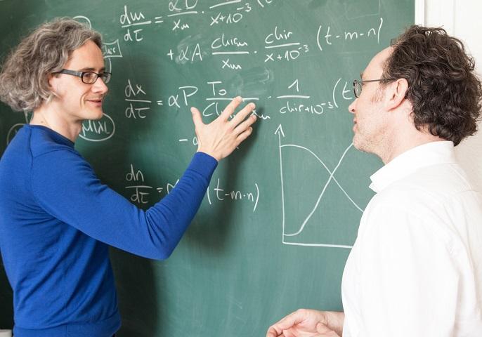 Dr. Ingmar Glauche und Prof. Ingo Röder besprechen ihr Modell an einer Tafel.