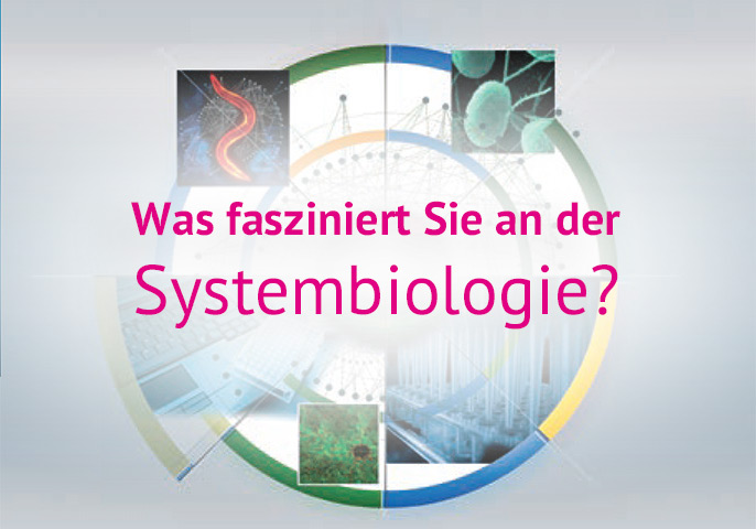 Was fasziniert Sie an der Systembiologie?